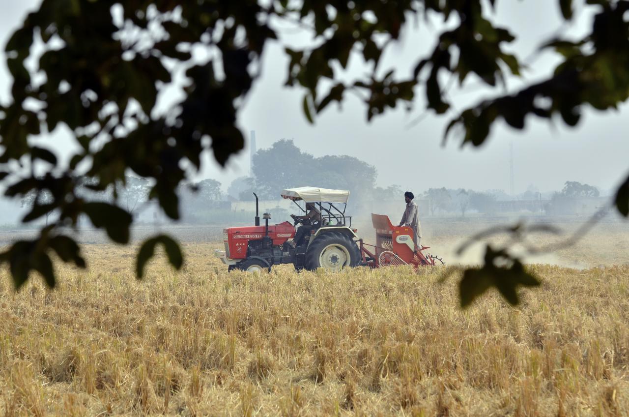 Agricultural Statesmanship