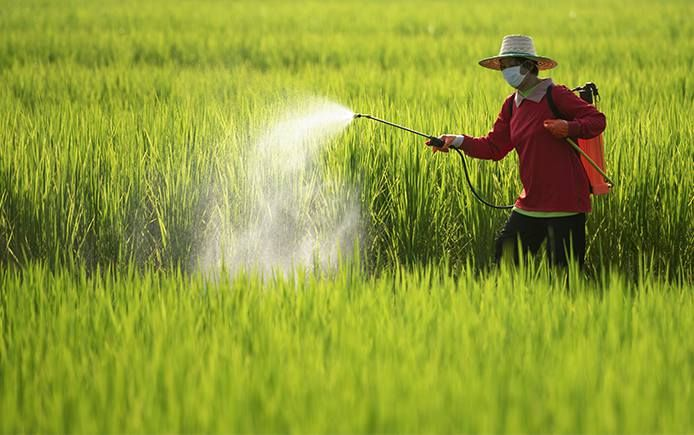 Pesticide ban