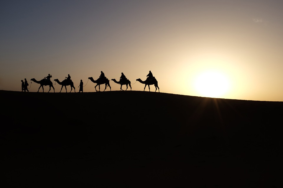 five camels in a desert with tourists on their back during sunset